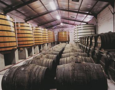 Comment est fait le cognac ? Découvrez la fabrication