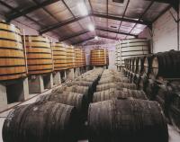 Comment est fait le cognac ? Découvrez les étapes de fabrication